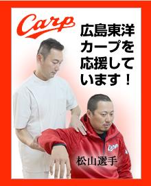 広島東洋カープを応援しています!